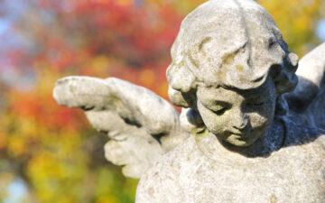 Gary Quinn: Angeli, Affermazioni e Pensieri Positivi