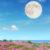 Luna Piena in Bilancia Marzo 2021